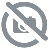 25 Cent Canada 2008 - Winter Olympics, Freestyle Skiing